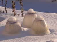 Winter_cloches_in_the_snow