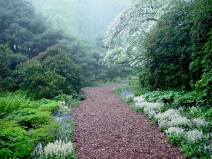 W018_West_Slope_Path_Spring_MCC_1564-386x290