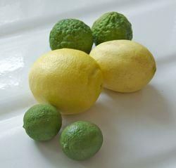Limes01_02_2013
