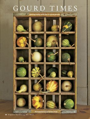 Gourd_box_photo